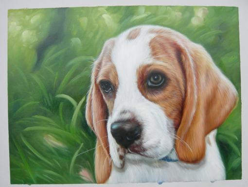 Male Puppy Oil Portrait